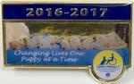 2016- 2017 President's Pin
